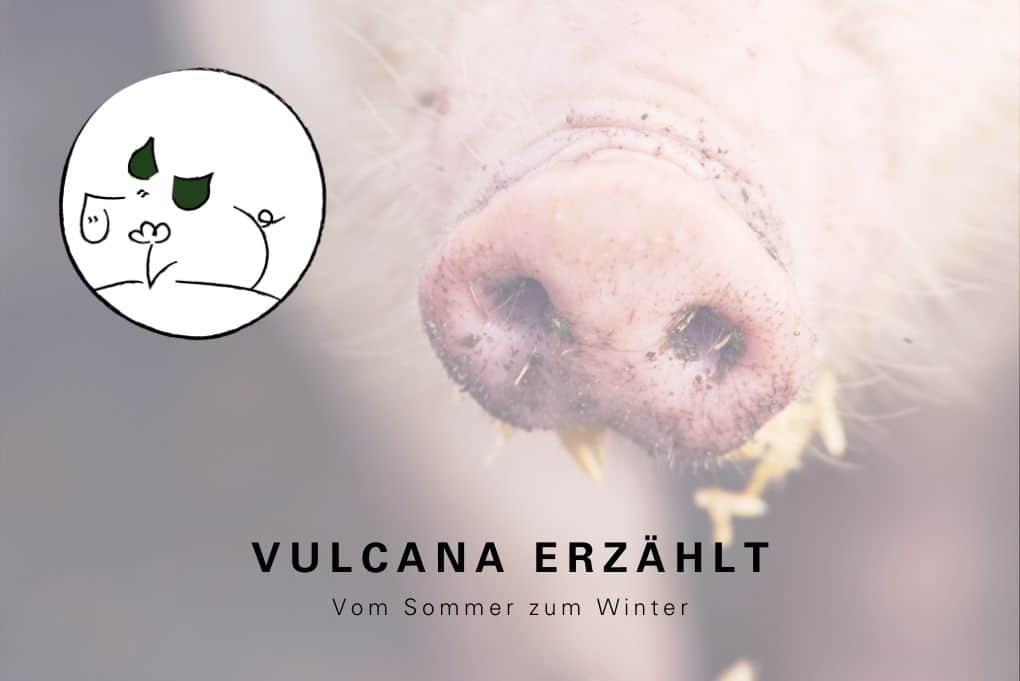 Vulcano Magazin
